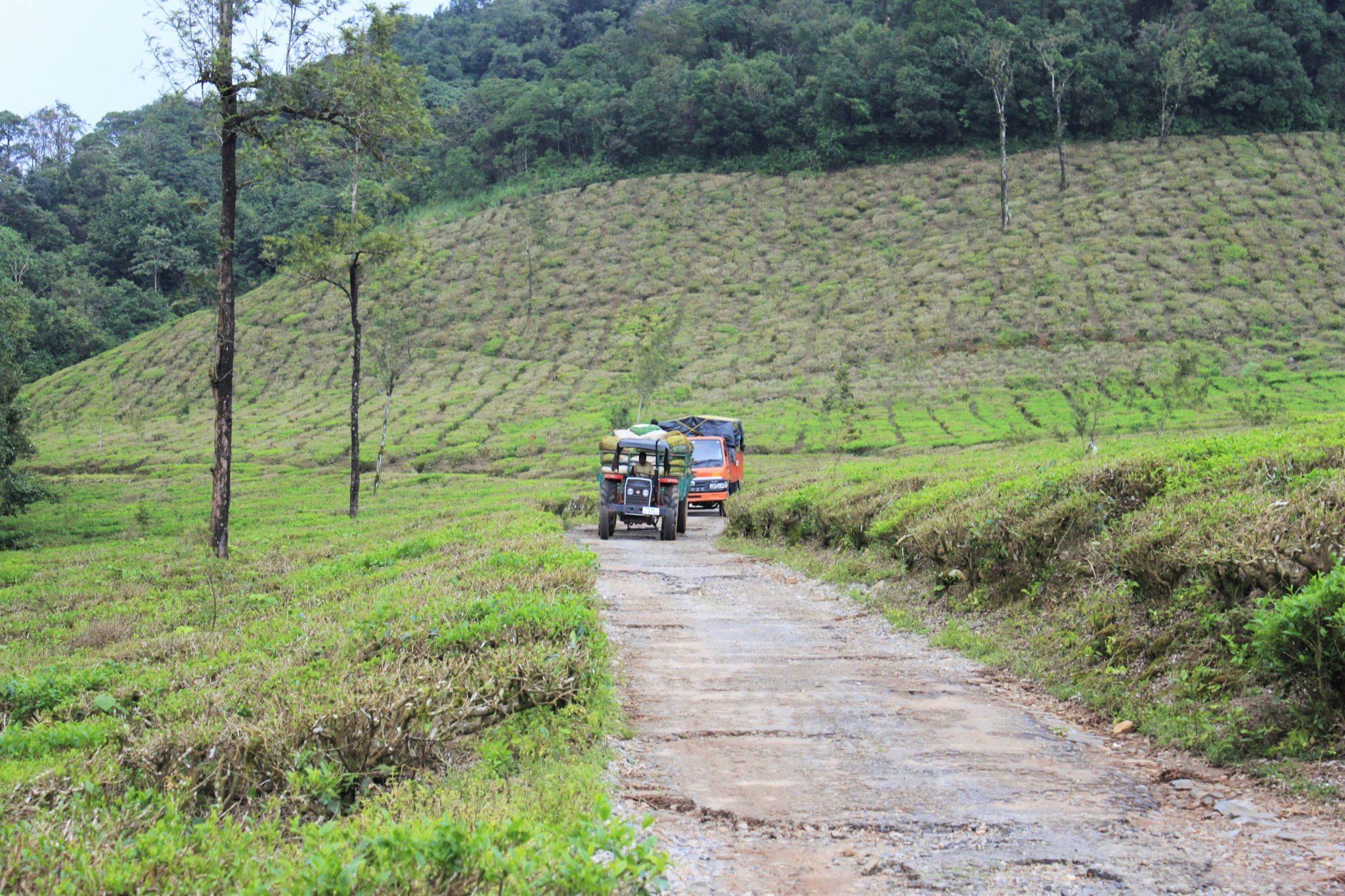 kadamane-route