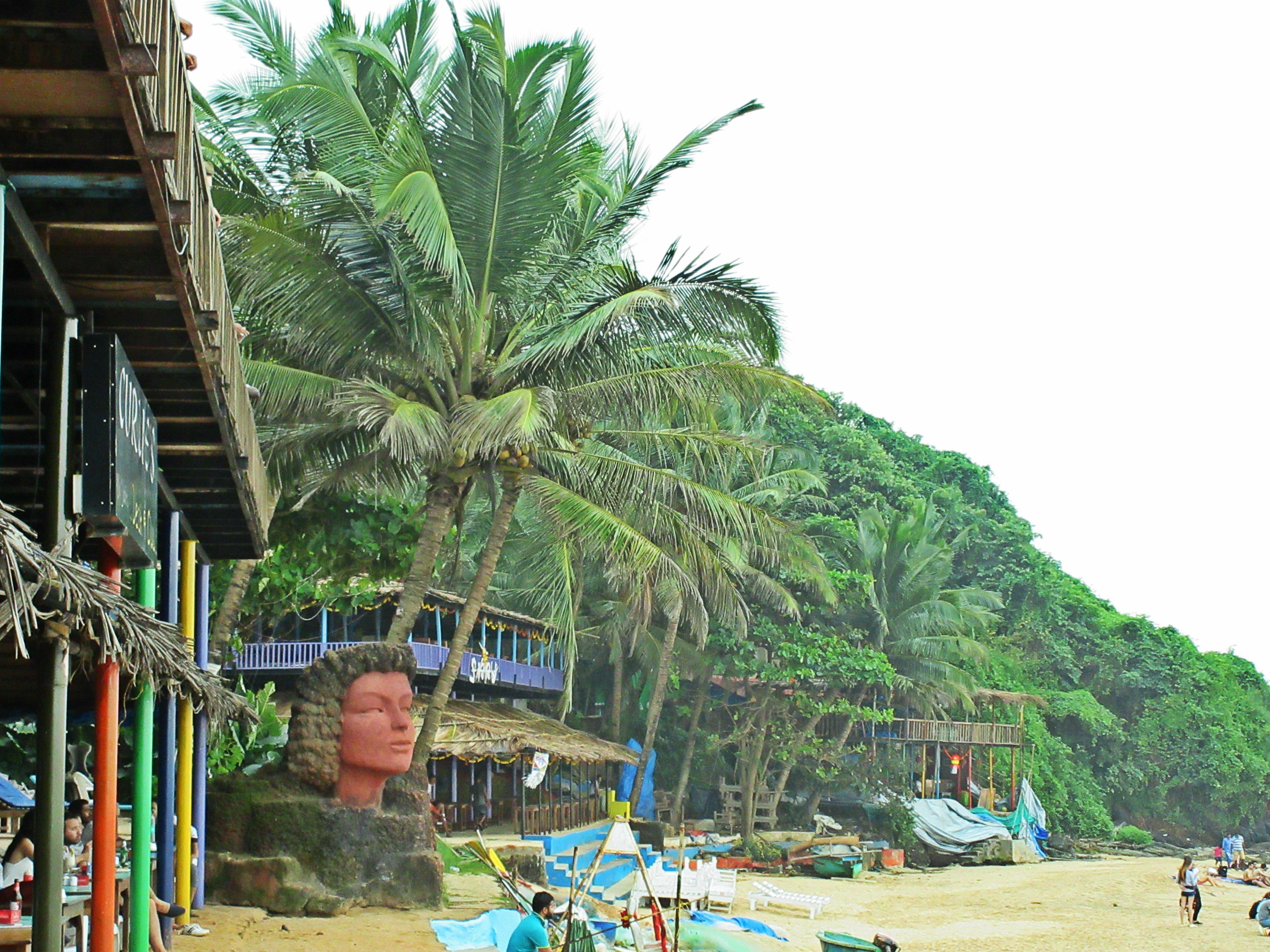 Curlie Beach in Goa