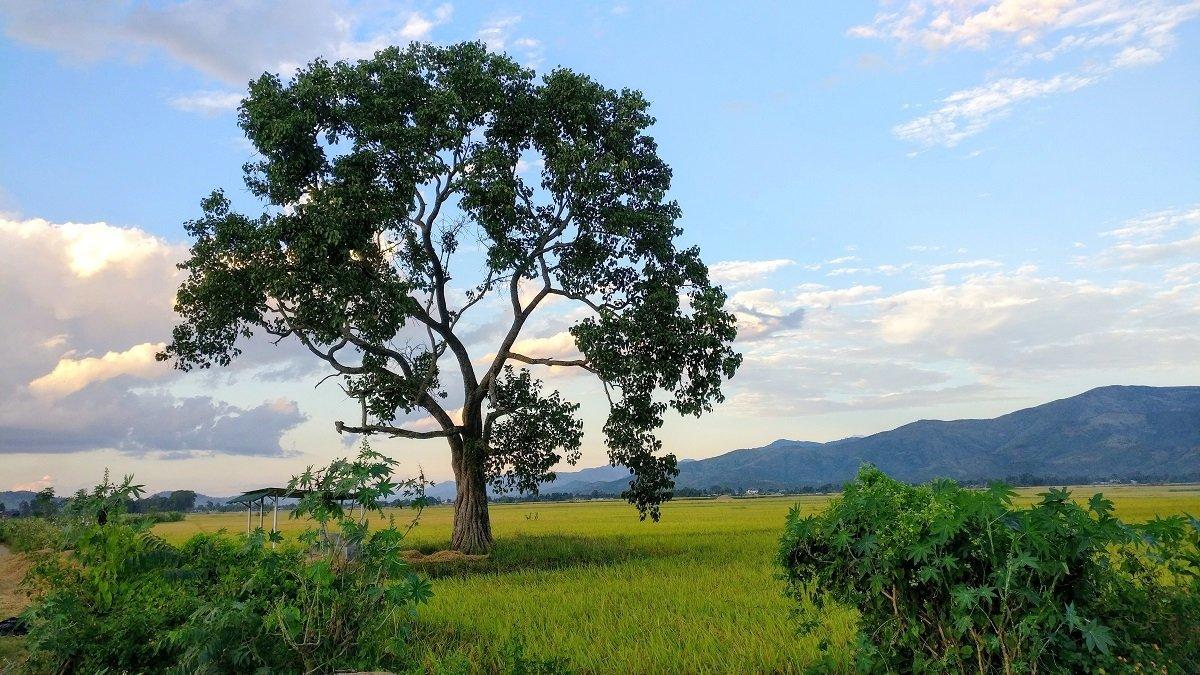 Tengnoupal-Moreh Highway
